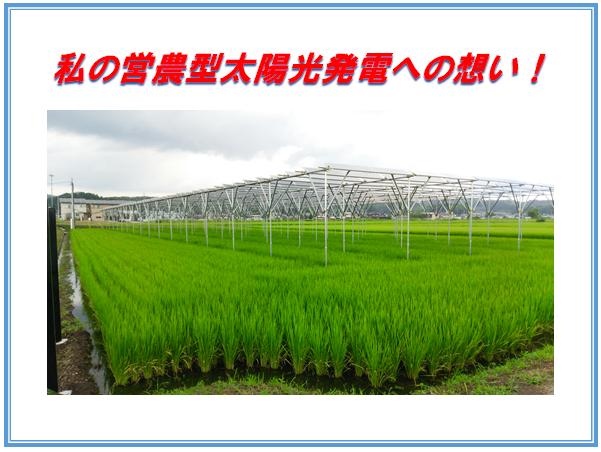 営農型太陽光を設置した訳のイメージ